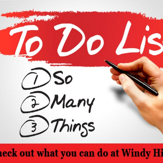 Things to do @ Windy Hill